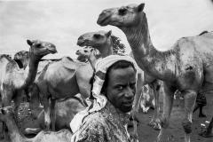 Babyle-Ethiopia 2009