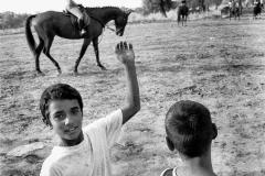 Goumero-Grece 2004