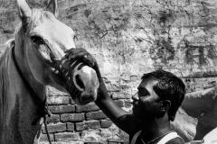 Jaipur 2005