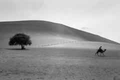 Dunhuang-China 2007
