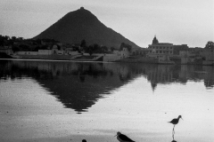 Pushkar-India 2005